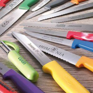 Günstige Küchenmesser, Obstmesser, Gemüsemesser oder Brotmesser mit Plastikgriff als Werbeartikel gravieren oder bedrucken wir mit ihrem Logo. Hier haben wir ein billiges Werbegeschenk in unserem Angebot!